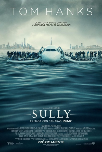 Sully Pelicula Online